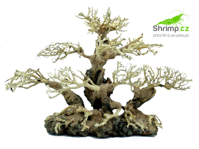 Bonsai Tree 40x15x30 cm